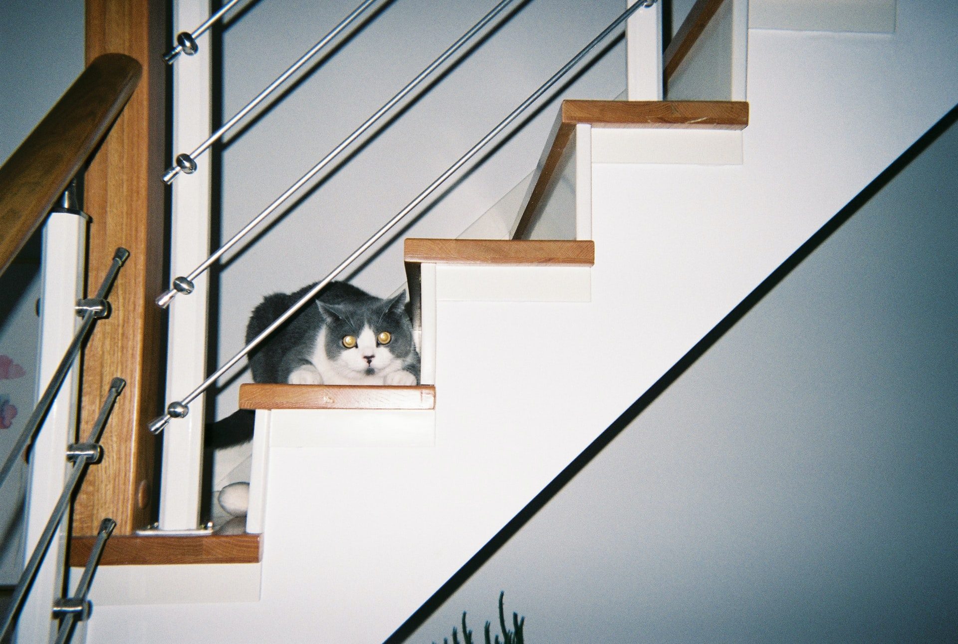 Steel Railing Styles for Your Home or Business